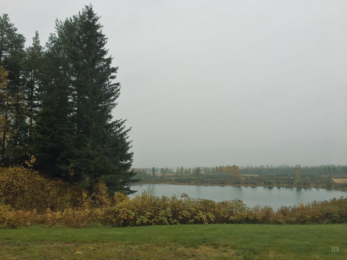 Autumn's rain.