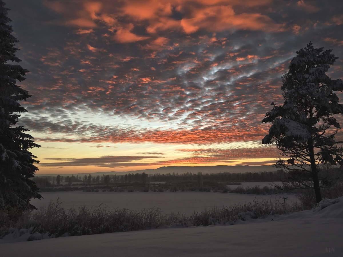 Blogmas 2: Nacreous clouds & amazing sunsets.