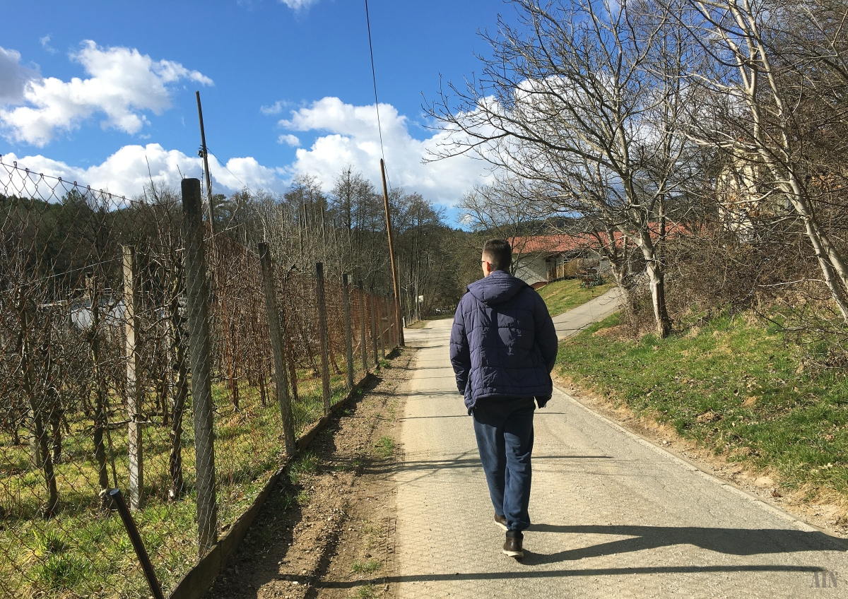 Sunny walks inSlovenia.